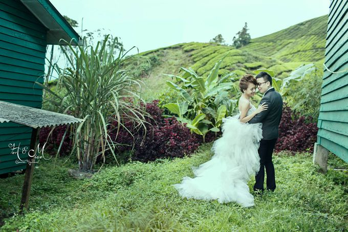 The best of  Pre-Wedding in Cameron Highland by maxtography - 019