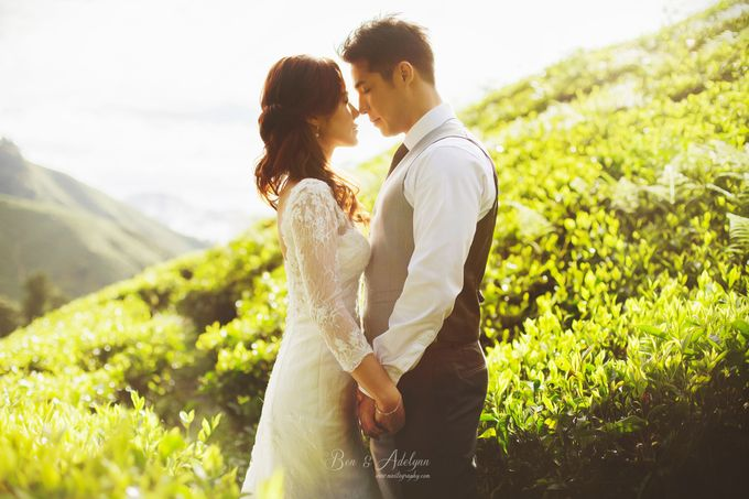 The best of  Pre-Wedding in Cameron Highland by maxtography - 024