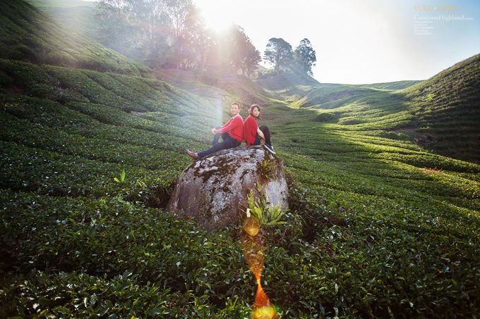 The best of  Pre-Wedding in Cameron Highland by maxtography - 026