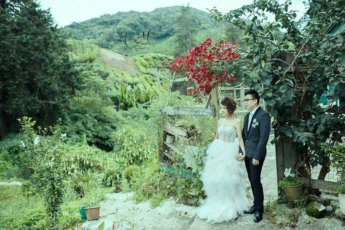 The best of  Pre-Wedding in Cameron Highland by maxtography - 031