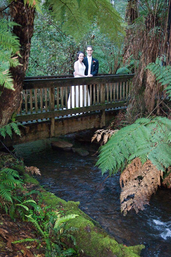 Lyrebird Falls by Treasured Ceremonies - 003