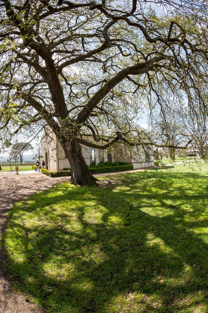 The Chapel by Stones of the Yarra Valley - 006