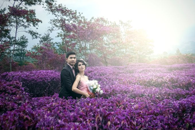 Color of Harmony Preweding by Creative by dre - 003