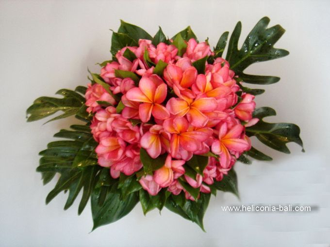 WEDDING BOUQUET by HELICONIA  Bali - 004