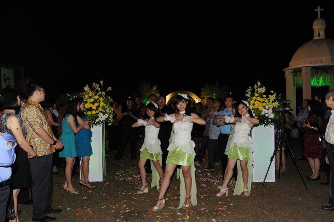 Wedding Flashmop by Various Dance Enterprise - 005
