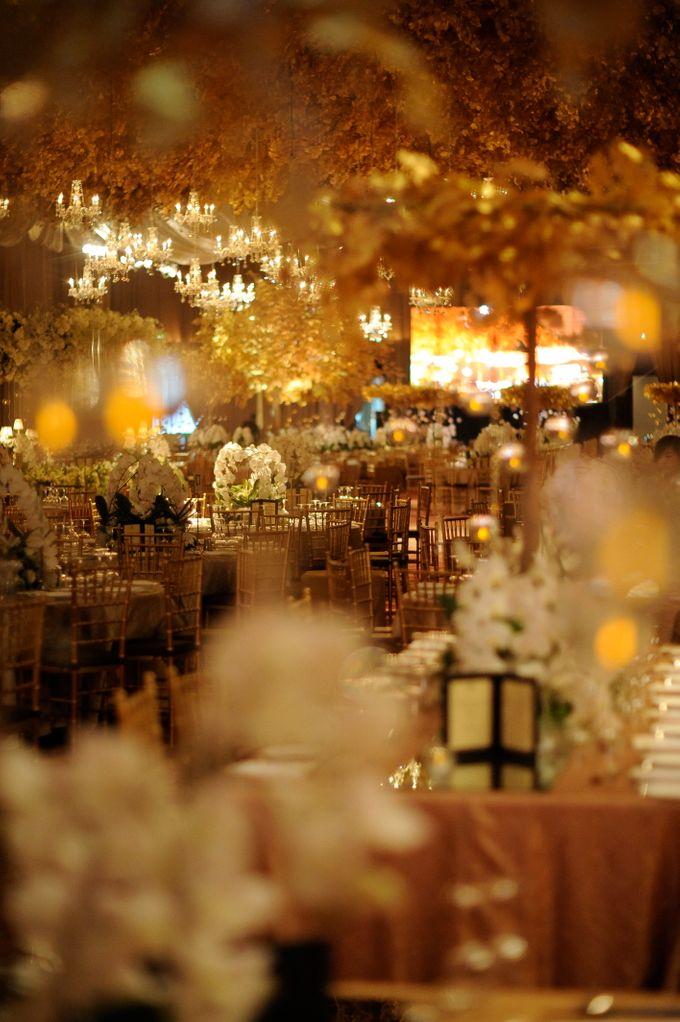 Elegant White and Gold by STEVE'S DECOR - 004