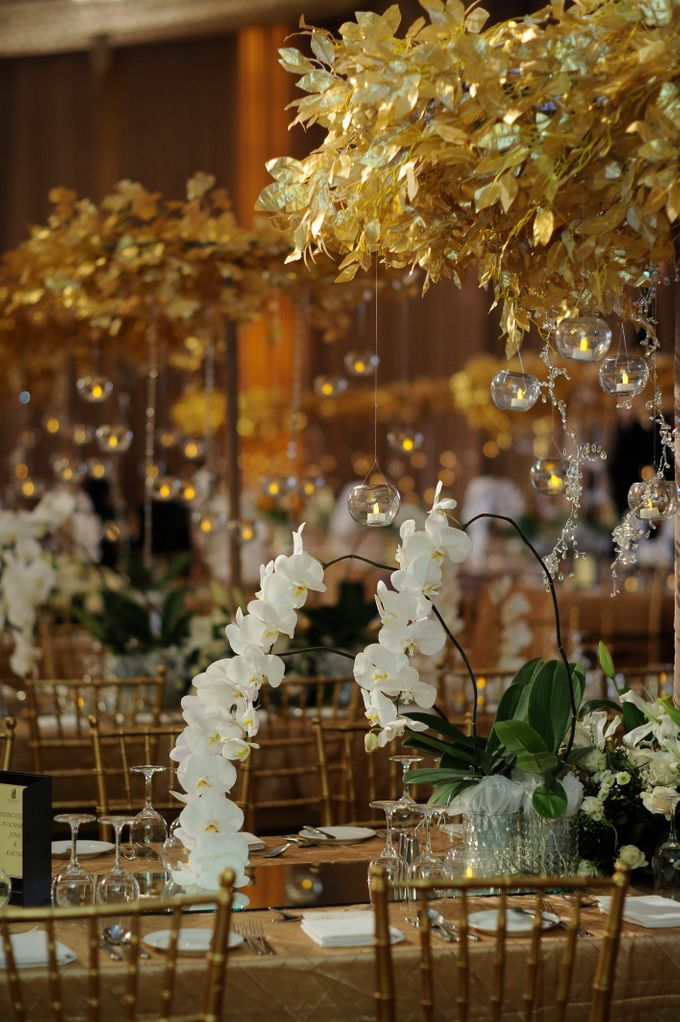 Elegant White and Gold by STEVE'S DECOR - 001