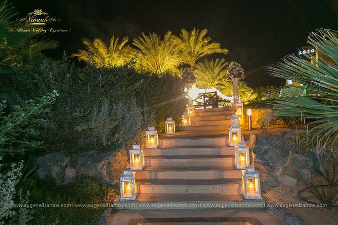 An Oasis of Love by Vivaah Weddings - 013