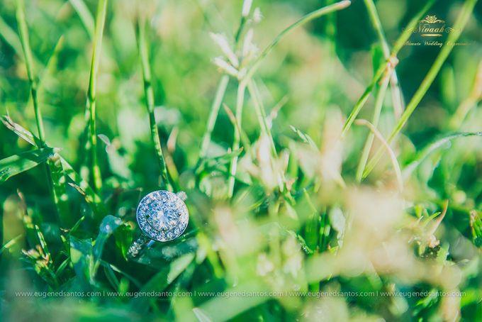 An Oasis of Love by Vivaah Weddings - 001