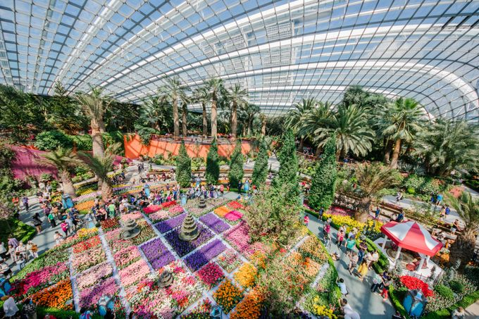Add To Board Wedding Venue At Flower Field Hall By Gardens By The Bay   005