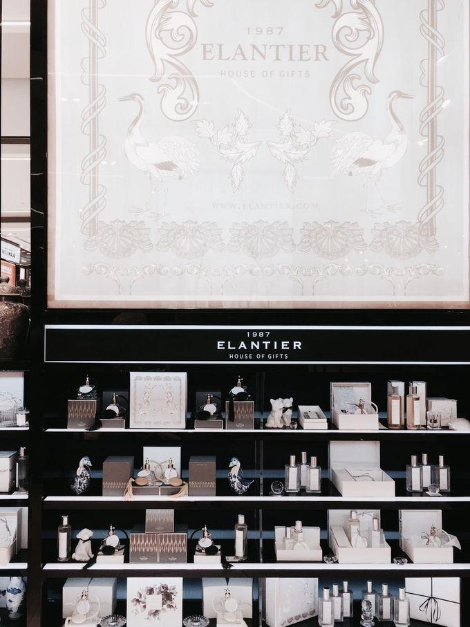 Elantier Collection by Elantier - 022