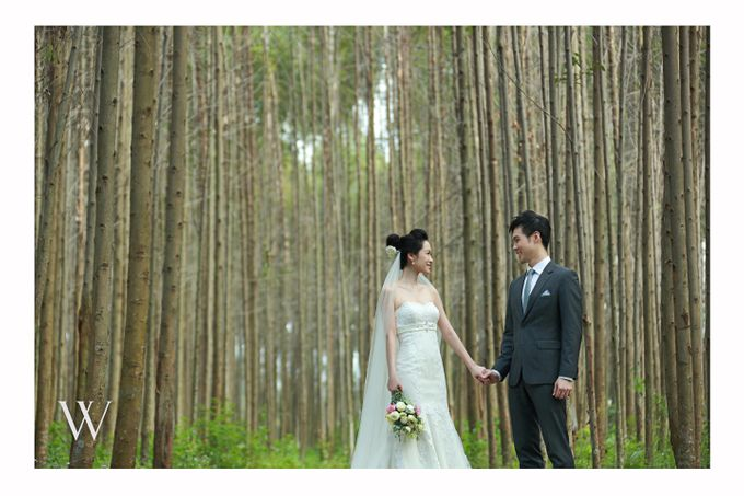 Wedding by W Weddings - 004