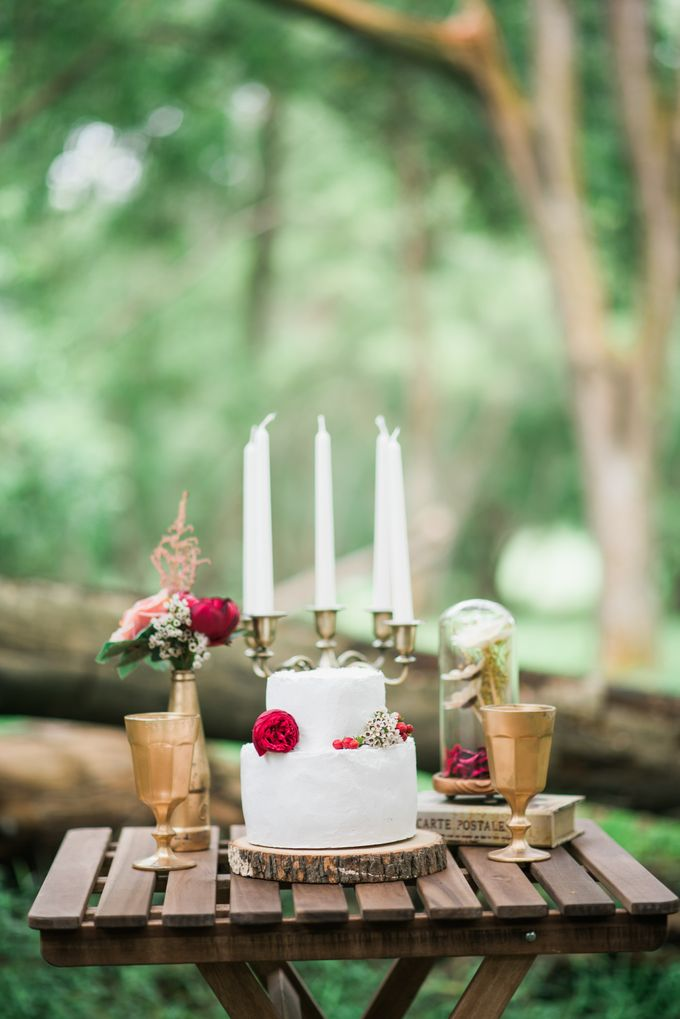 Enchanted Fairytale - Prewed Styled Shoot by Amperian - 027