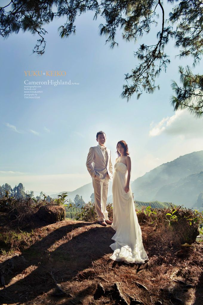 The best of  Pre-Wedding in Cameron Highland by maxtography - 035