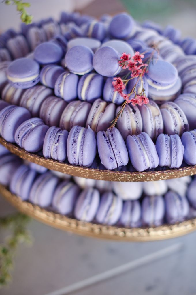 Ombre Purple by A Love Tale - 012