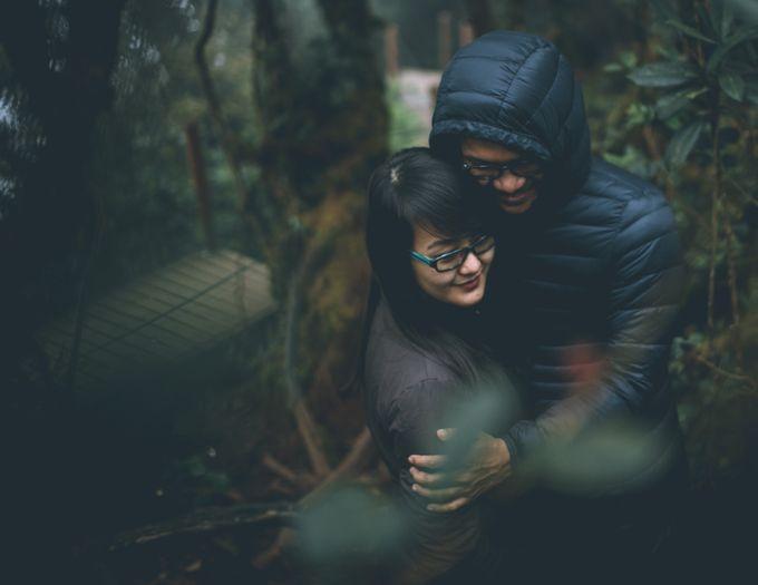 Nuzian & Haziq Elopment by White Carousel Photography - 011