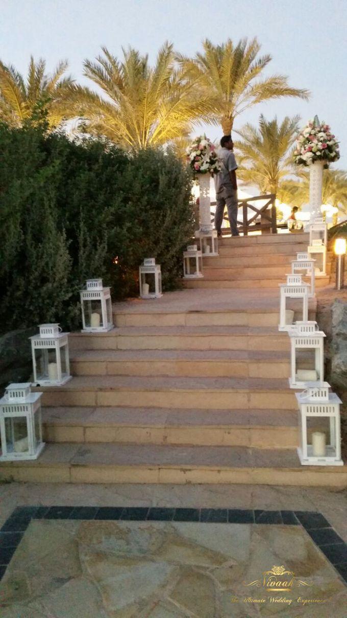 An Oasis of Love by Vivaah Weddings - 014