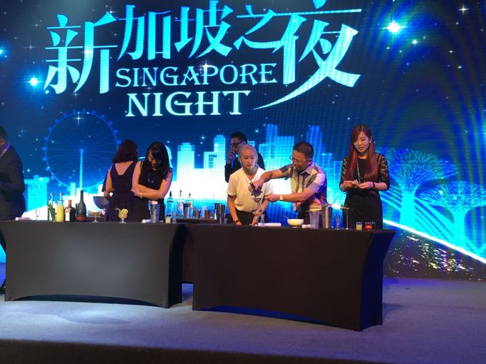 STB China Singapore Night by Mixes From Mars - 005