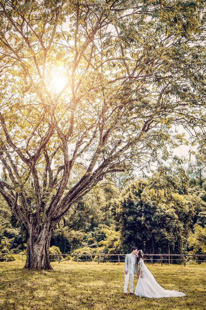 Singapore Pre-wedding by My Dream Wedding - 020