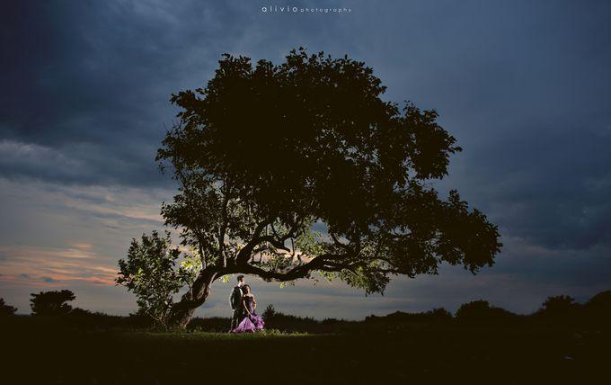 hartono & intan prewedding by alivio photography - 005