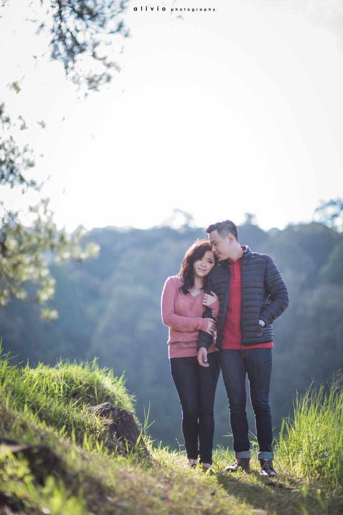 calvin & amelia prewedding by alivio photography - 004