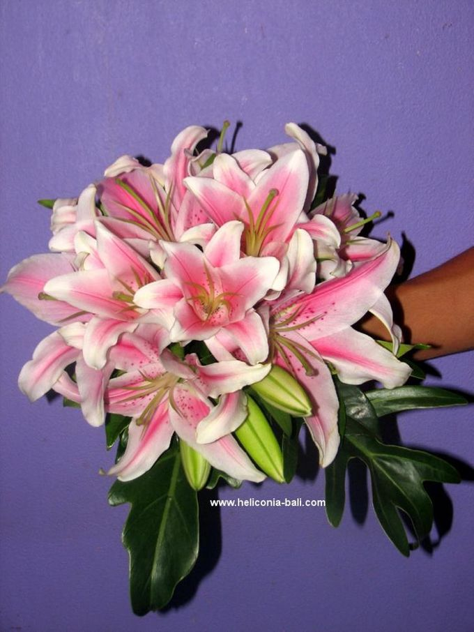 WEDDING BOUQUET by HELICONIA  Bali - 005