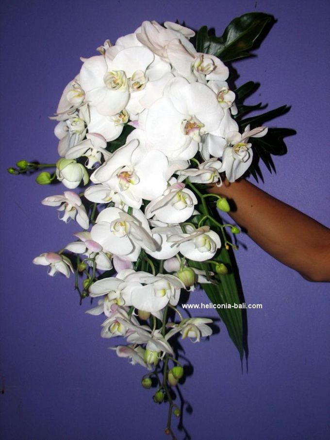 WEDDING BOUQUET by HELICONIA  Bali - 007