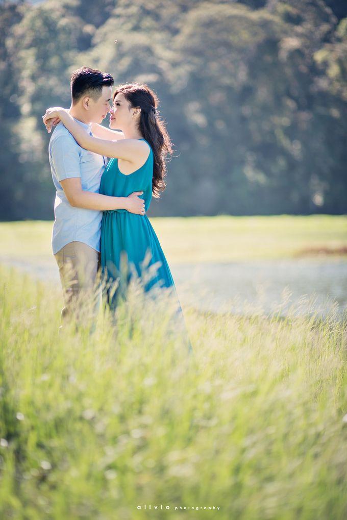 calvin & amelia prewedding by alivio photography - 005