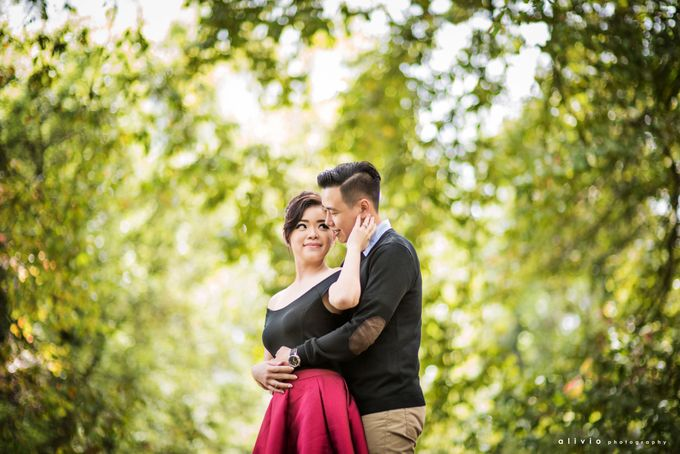 calvin & amelia prewedding by alivio photography - 006