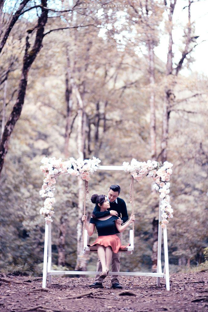 calvin & amelia prewedding by alivio photography - 007