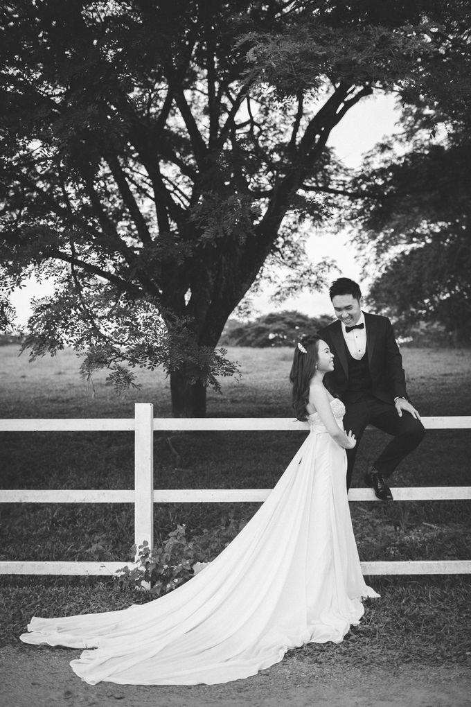 Pre Wedding Photography by The Wedding Barn Gallery - 001