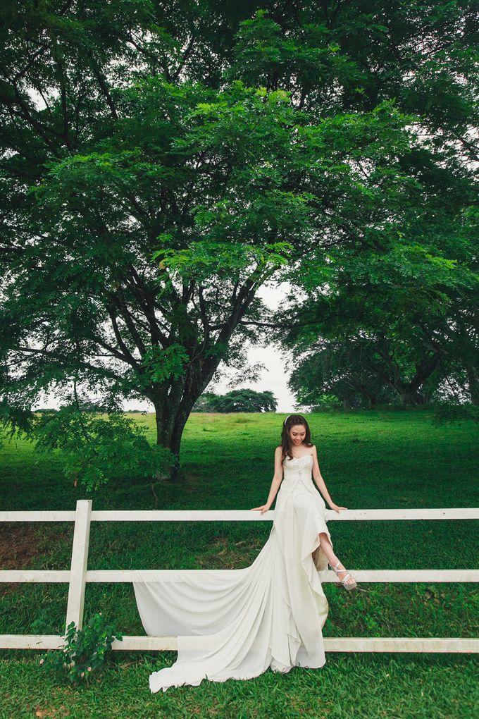 Pre Wedding Photography by The Wedding Barn Gallery - 002