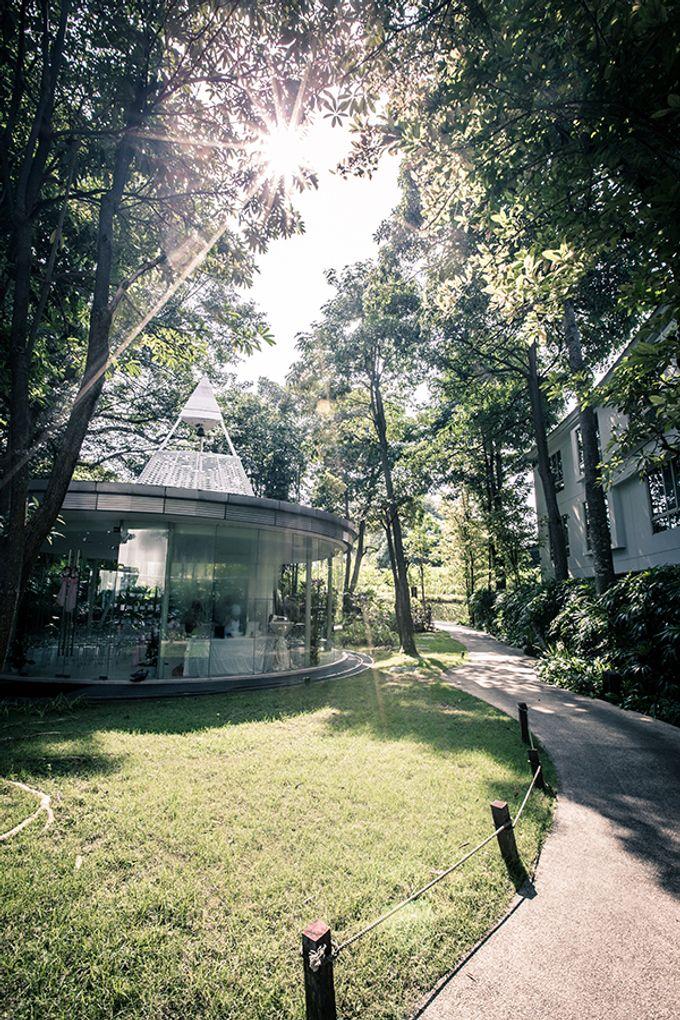 Glass Pavilion by Amara Sanctuary Resort Sentosa - 008