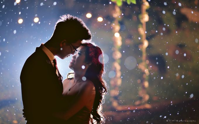 hartono & intan prewedding by alivio photography - 028