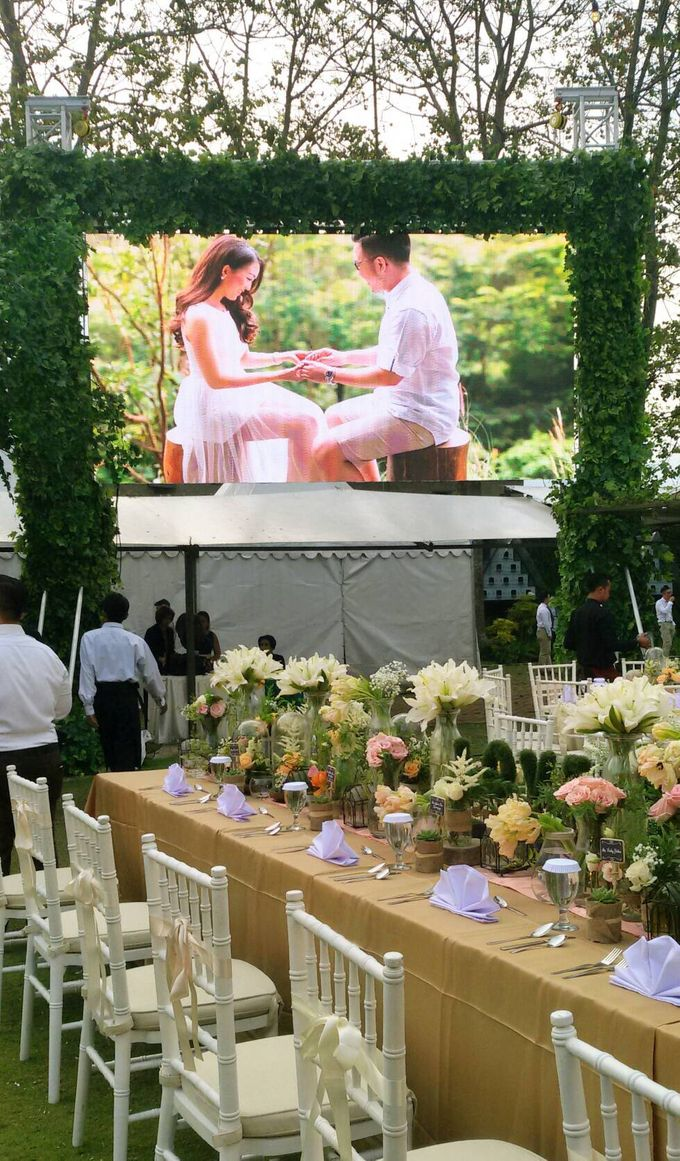 LED Rental for Garden Wedding Party by Studio Pro - 001