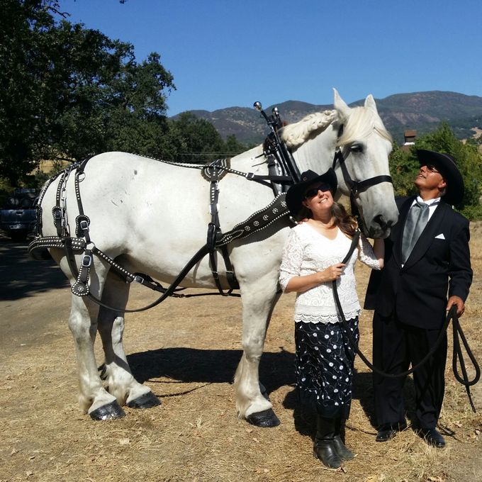 Wine Country Weddings by Wine Country Wedding Carriages - 006