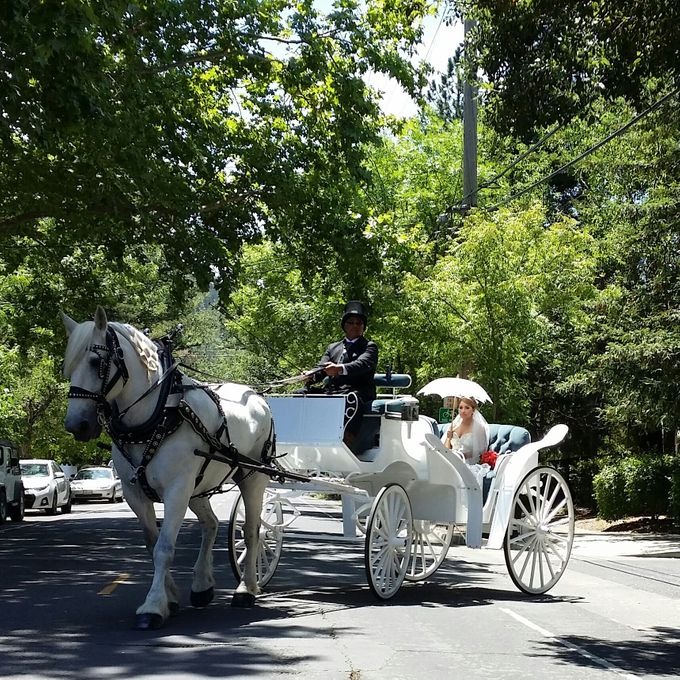 Wine Country Weddings by Wine Country Wedding Carriages - 008