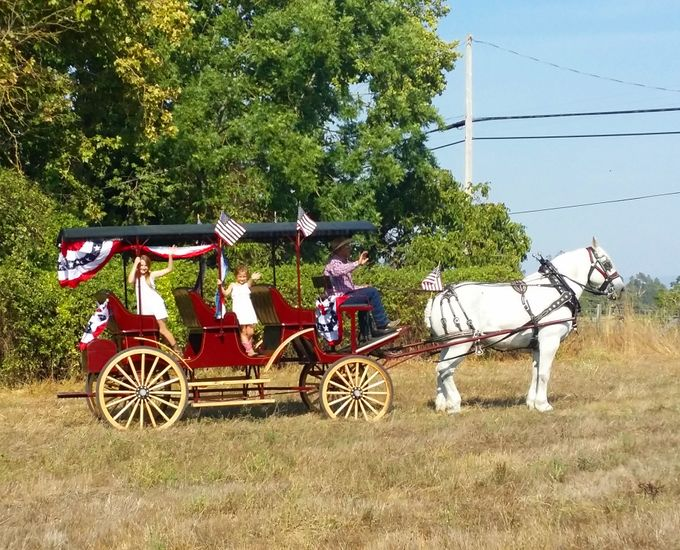 Wine Country Weddings by Wine Country Wedding Carriages - 010