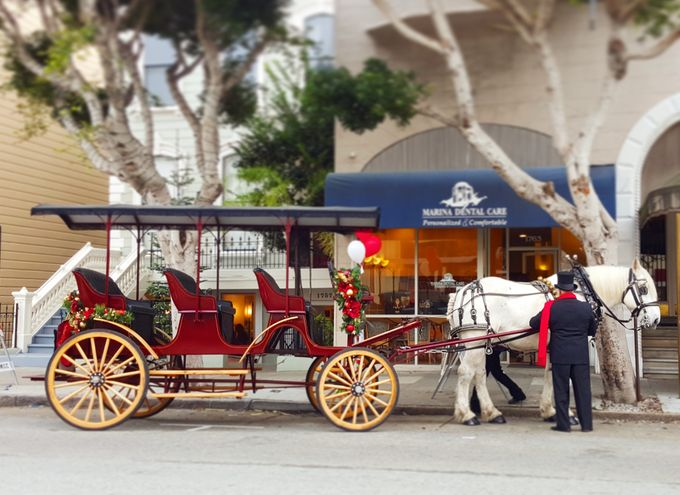 Wine Country Weddings by Wine Country Wedding Carriages - 002