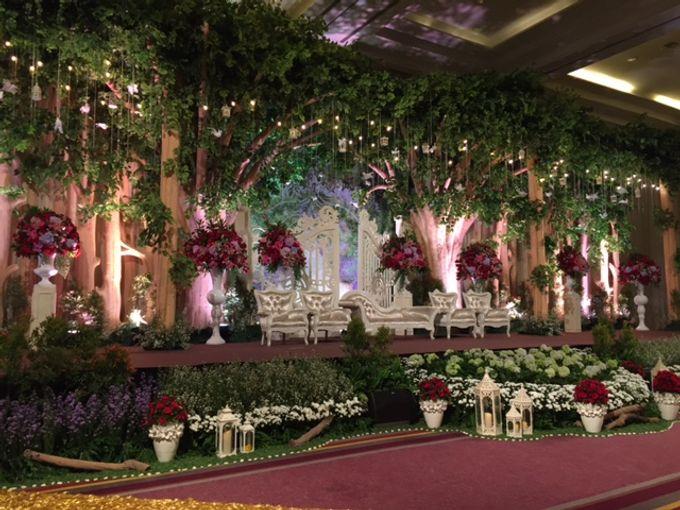 Romance in the Jungle - The wedding of David  & Ines by Fernando Edo - 004