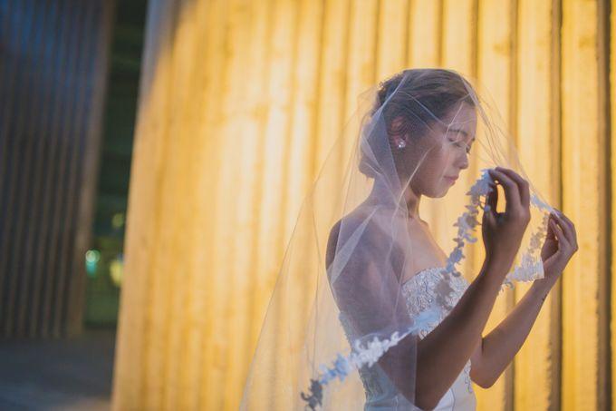 Pre-wedding Shoot by Renatus Photography   Cinematography - 004