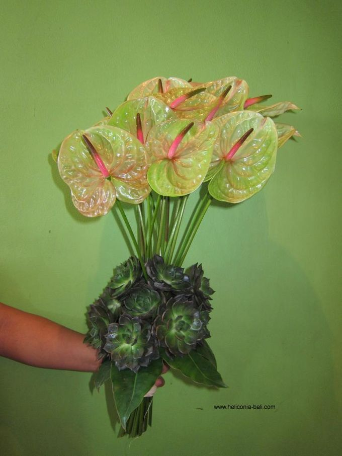 WEDDING BOUQUET by HELICONIA  Bali - 010