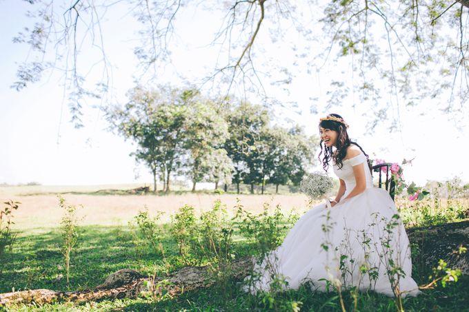 Rustic Wedding by The Wedding Barn Gallery - 002