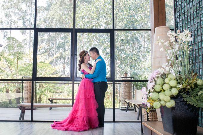 Prewedding 3 by Xin-Ai Bride - 003