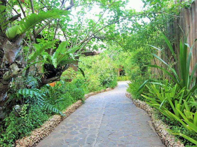Garden Villa by Tarsier Botanika - 009