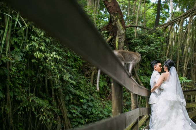 The Prewedding Of Yudi & Stella by My Dream Bridal and Wedding - 003