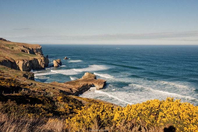 New Zealand Pre Wedding by Basetime Production - 013