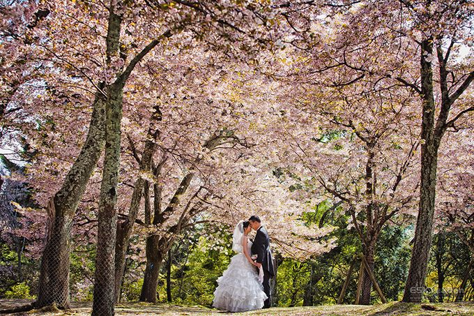 Pre wedding in Japan by ES Creation Photography - 001
