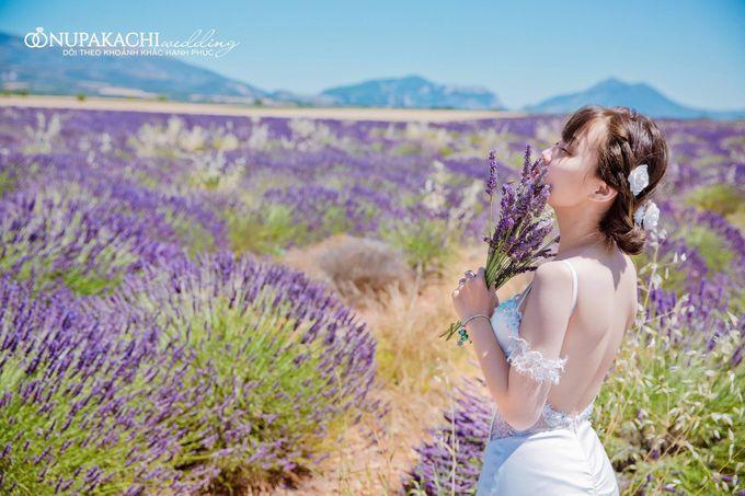 Prewedding shooting in Europe by Nupakachi Wedding & Events - 002