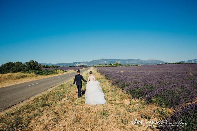 Prewedding shooting in Europe by Nupakachi Wedding & Events - 011